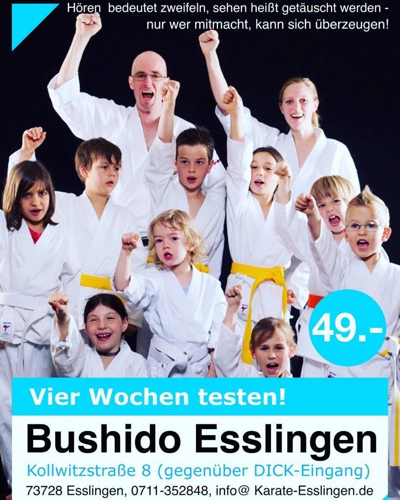 Kampfsport Esslingen
